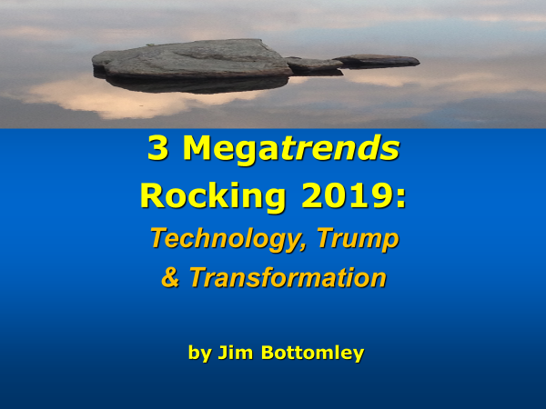 THREE MEGATRENDS ROCKING 2019: Technology, Trump and Transformation